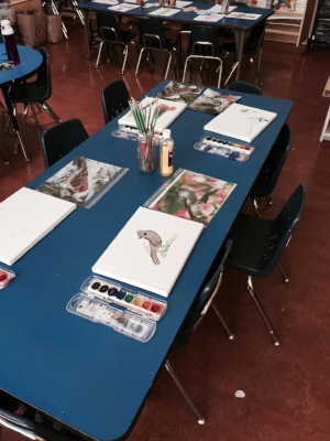 First & Second Grade: Art/Science Observational Drawing Invitation