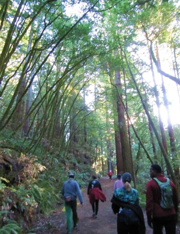 581_BWS_Muir_trail.jpg