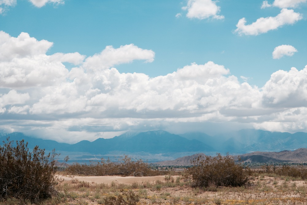 saddleback landscape.jpg
