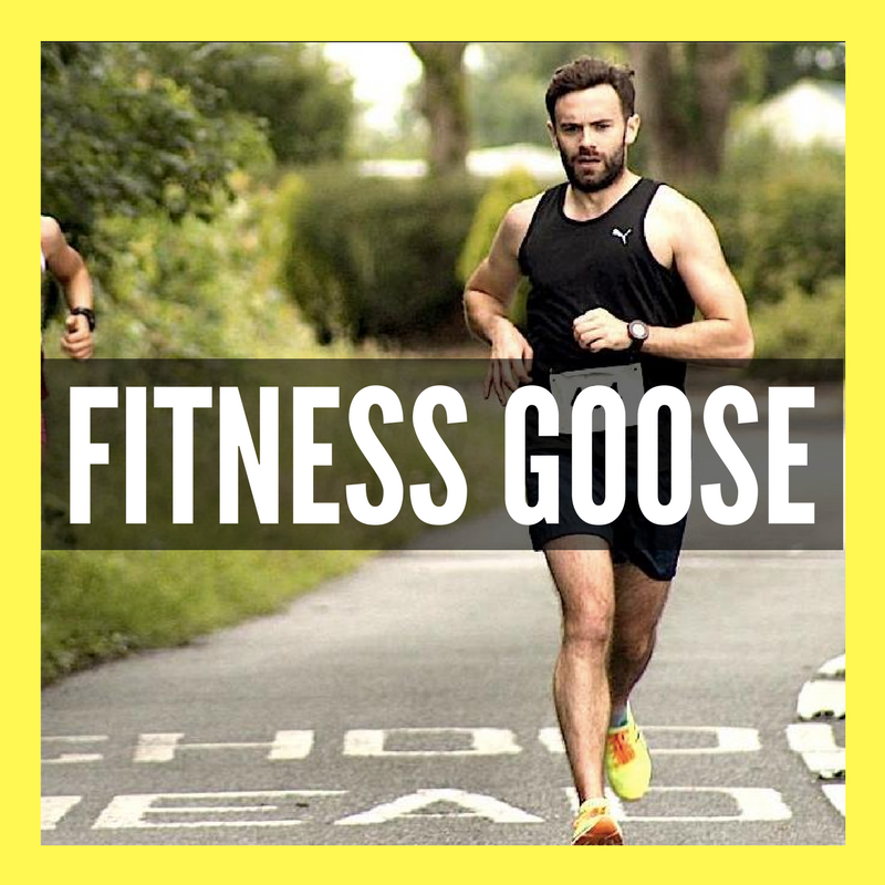 Fitness Goose Logo.png