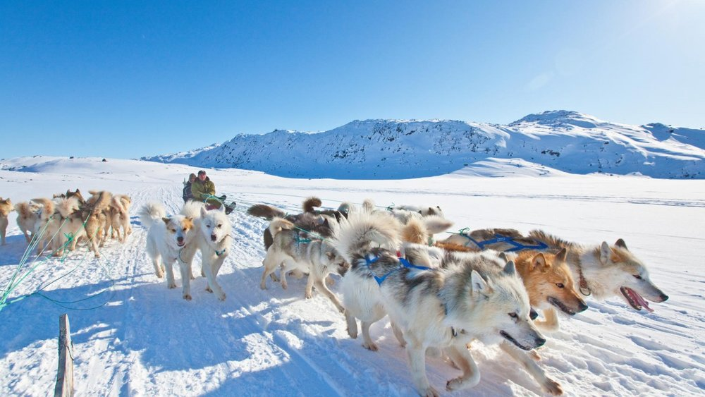 """1 - The race location is known to be in an environment were """"dog sleigh is still the most efficient means of transport in this part of the world"""""""