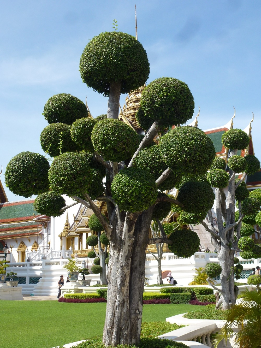 The Royal Palace with landscaping by Dr. Seuss.