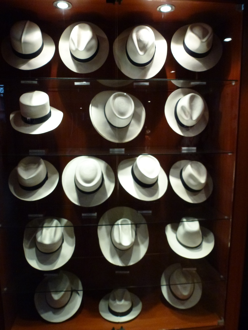 "Those ""Panama Hats"" range in price from about $20 up to about $4,000!"