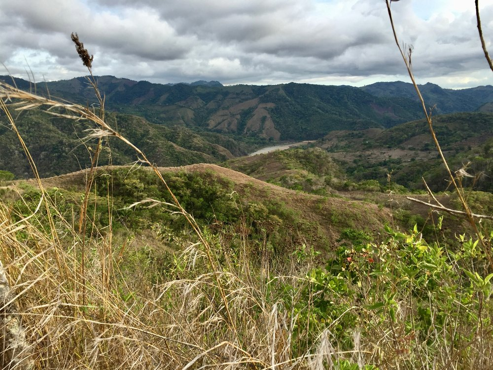 The drive up to Boruca . . .