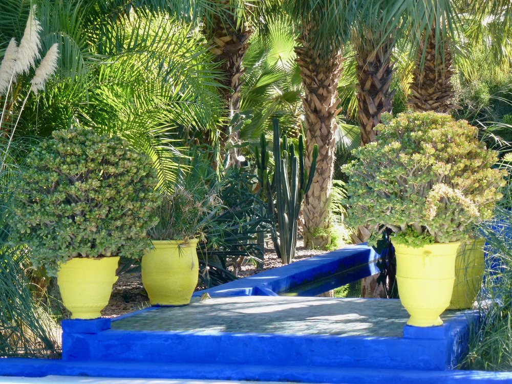 On a visit to Yves Saint Laurent's Jardin Majorelle we get some ideas of the shade of blue we might use next time we paint the house.