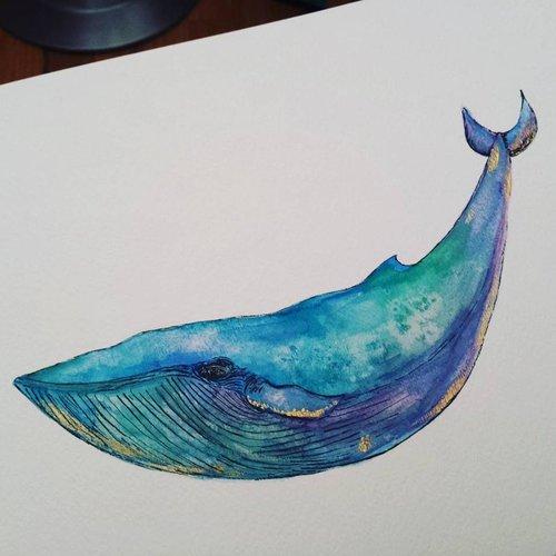 whale+10.jpg