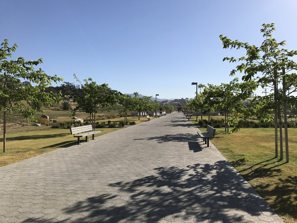 The tree-lined promenade adds an unexpected formality to an otherwise casual park.