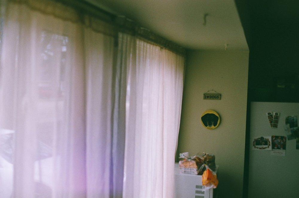 Canon AE-1/Fujifilm 400