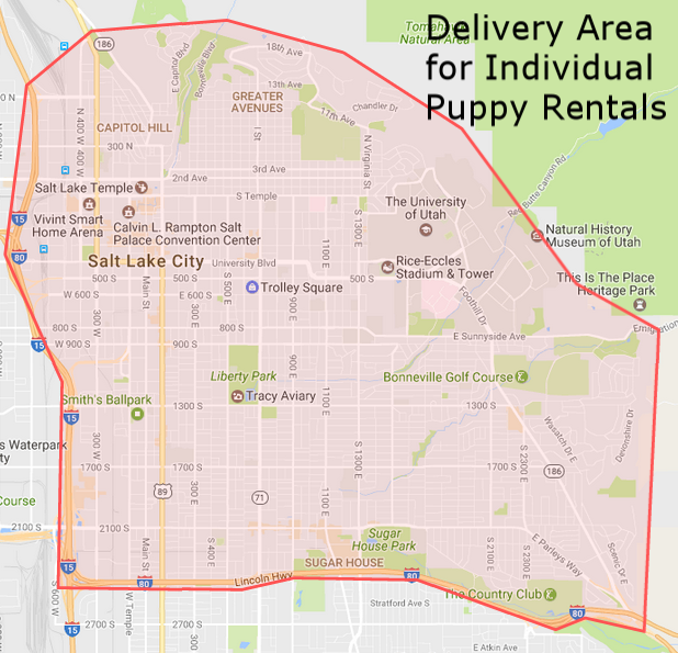 We offer free delivery for Individual Puppy Rentals to the area in red.  This includes addresses east of i15, north of i80, south of 1000 North and west of the mountains.  If your address is outside of this area we will not deliver to you.  Please plan on meeting us at Liberty Park to play with the puppies.