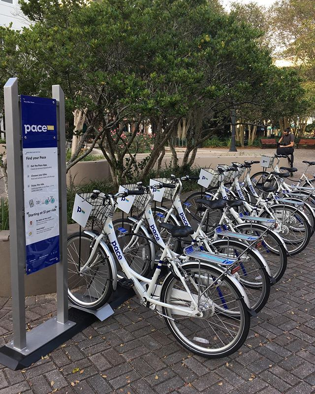 Our first Pace Bike Share is officially LIVE and FREE in Tallahassee through Wednesday! Be sure to tag @pacebikeshare in your photos for a chance to be reposted.  #FindYourPace #PaceTallahassee #Tallahassee