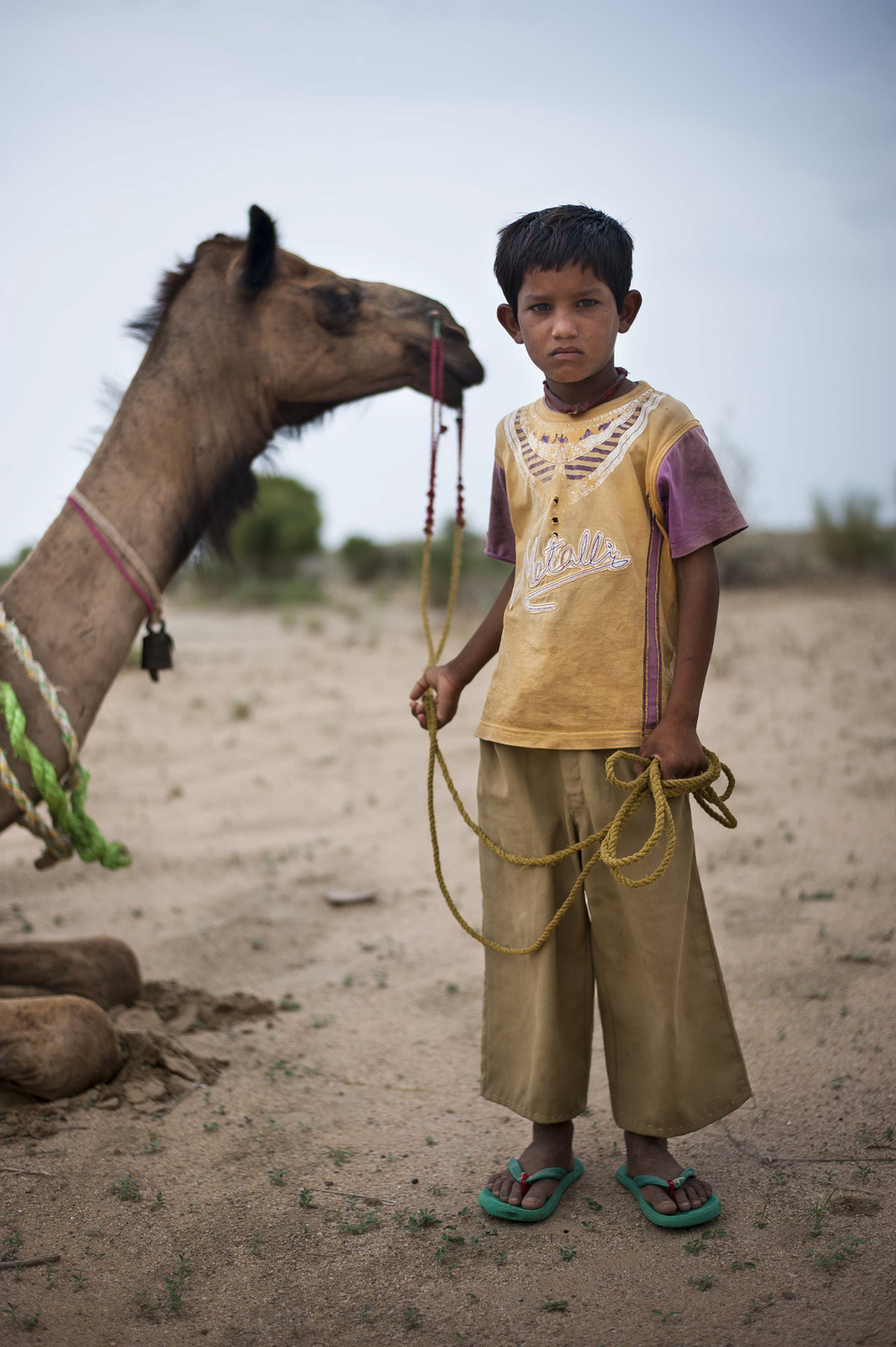Bujha, age 10, a camel safari guide, poses with Raja in the Great Thar Desert outside of Jaisalmer, Rajasthan, on July 25, 2015. Camel safari guides start training around age 10 to continue the business when they grow older.