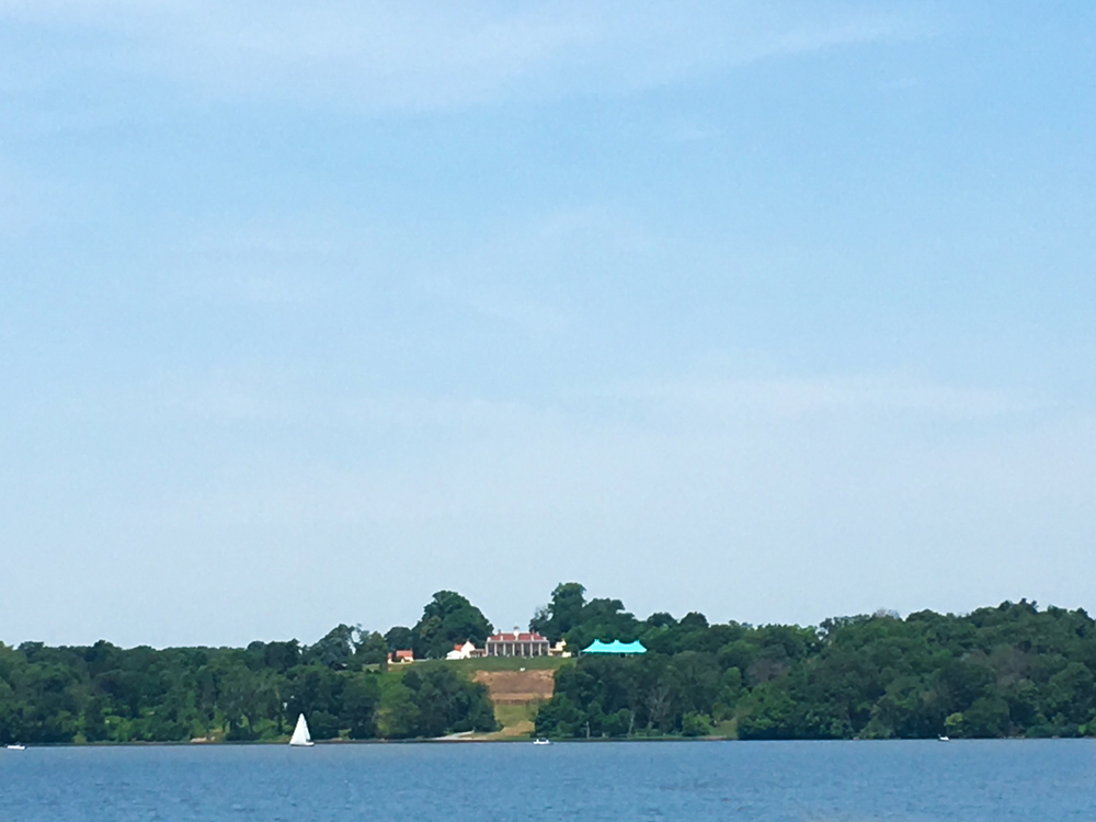 Mt Vernon from the river.jpg
