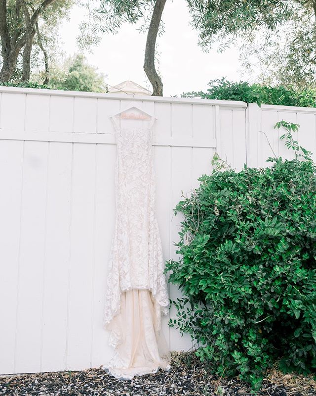 Heading out to a wedding today, LA for a shoot tomorrow & Santa Barbara for a workshop on Sunday. Stoked for a busy weekend. Also, the lace detail of this brides dress was absolutely stunning!