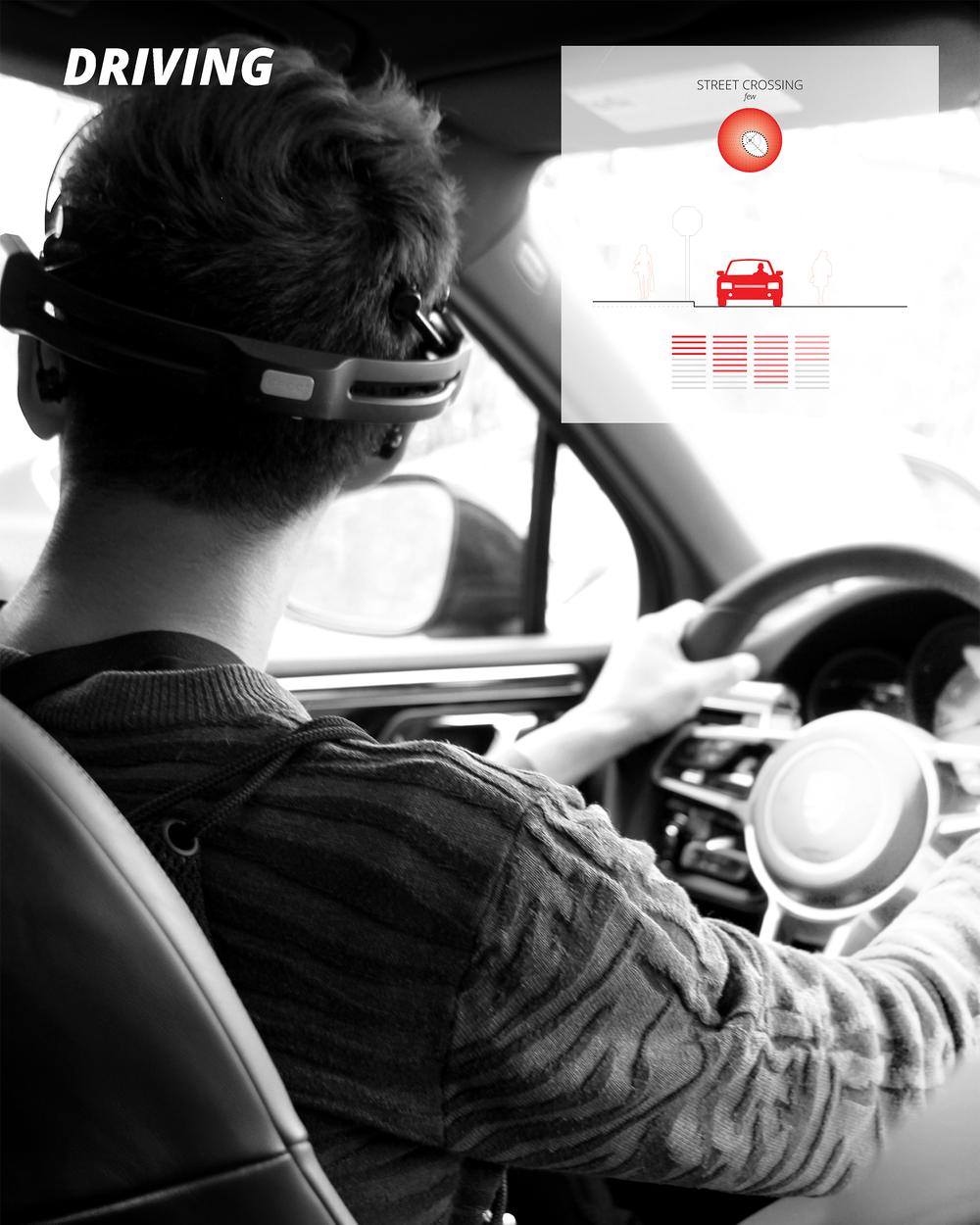 msc-driving.jpg