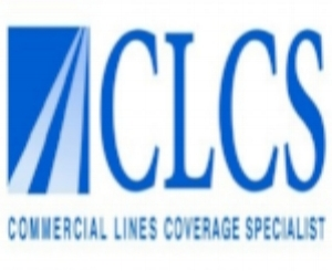Professional Commercial Lines designation Program