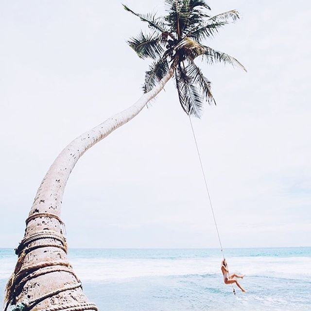 Ahhh and relax! This image can't help but put a smile on your face 💕 . 📷via Pinterest #smile #tropicaldreaming #relax #behappy #lifegoals #tweedcoast