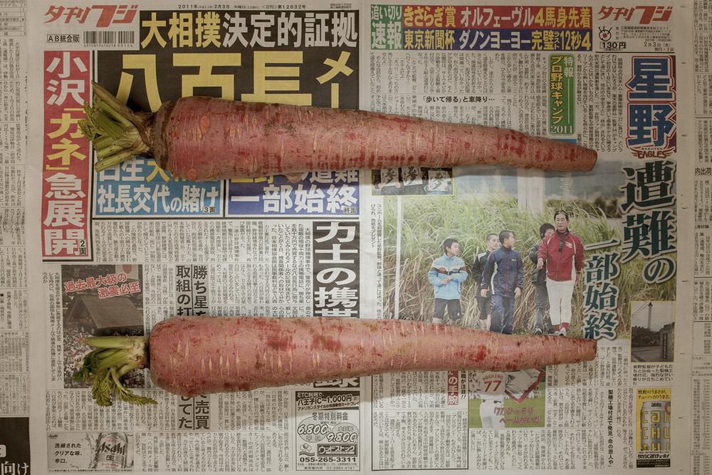 PovertyLineJapan 22 1(1500).jpg