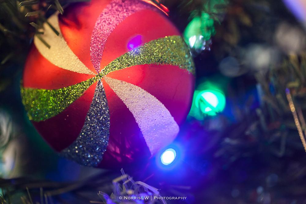 xmas-tree-20121217-004.jpg