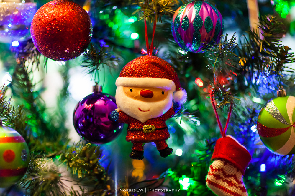 xmas-tree-20121217-018.jpg