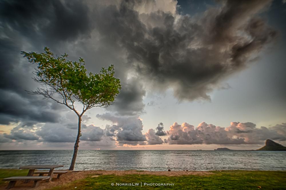 dA-Crazies-Kualoa-Beach-Park-20130518-002.jpg