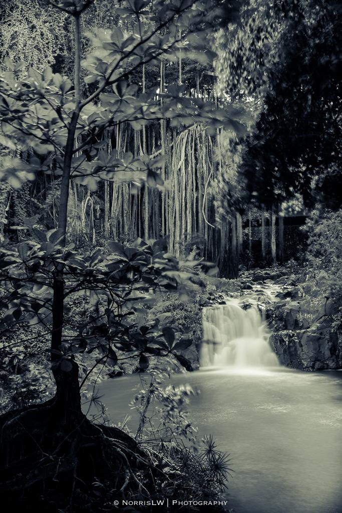 Kapena-Falls-20130608-002.jpg