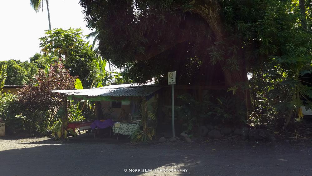 tahiti_landscape-20150522-034.jpg