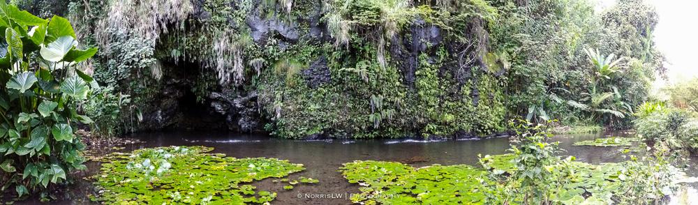 tahiti_landscape-20150522-051.jpg