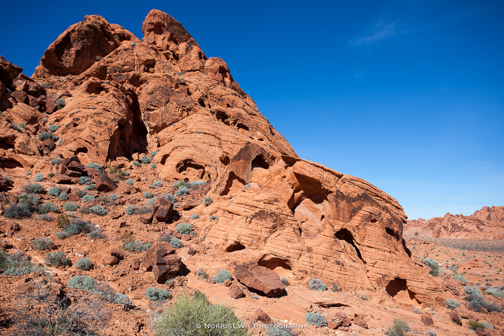 LV_ValleyOfFire-20160211-053.jpg