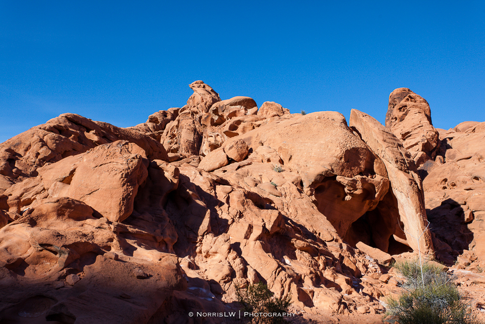 LV_ValleyOfFire-20160211-093.jpg