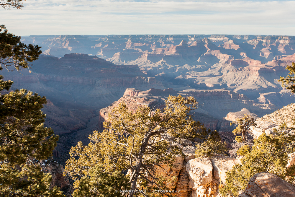 LV_Grand_Canyon-20160213-026.jpg