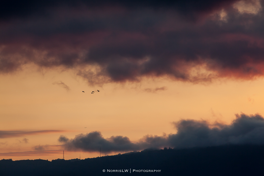 sunset-20140222-004