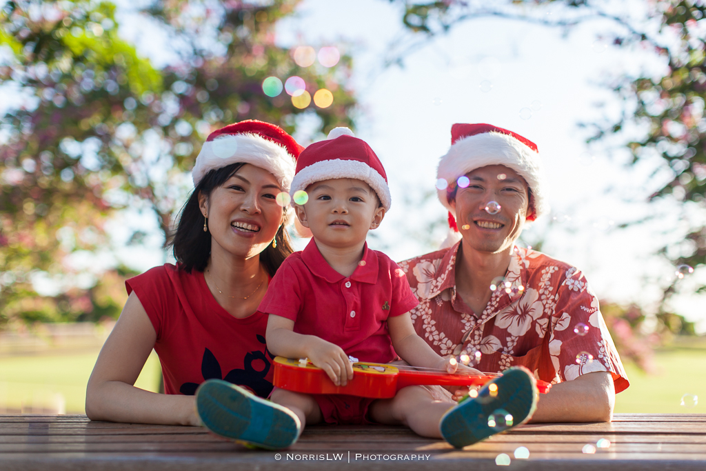 Family-Portrait-Huynh-Web-20141116-064