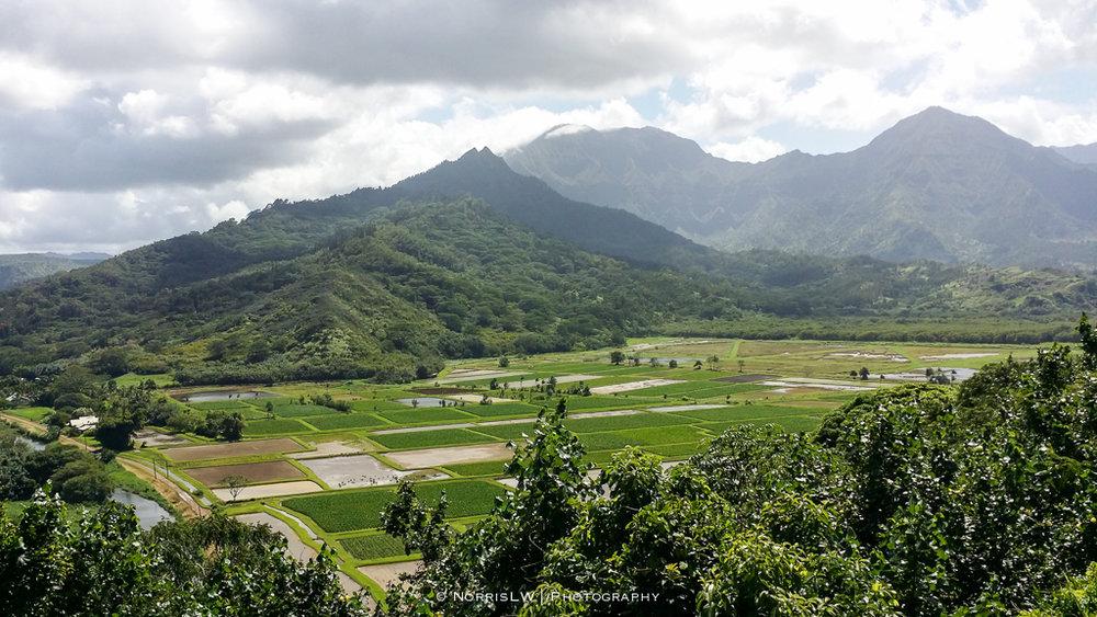 Kauai-20161005-011.jpg