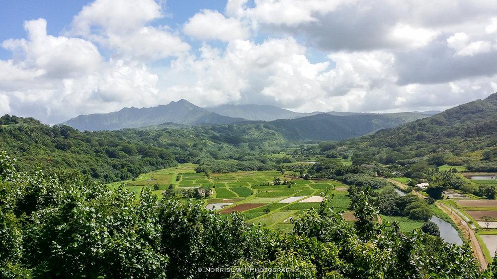 Kauai-20161005-012.jpg