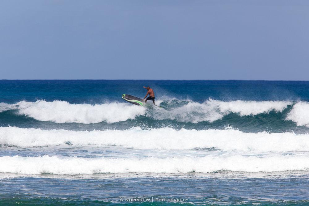 Turtle_Beach_Surf-20170407-009.jpg