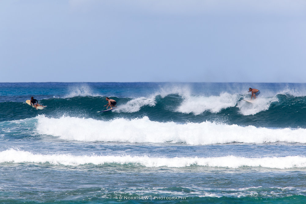 Turtle_Beach_Surf-20170407-013.jpg