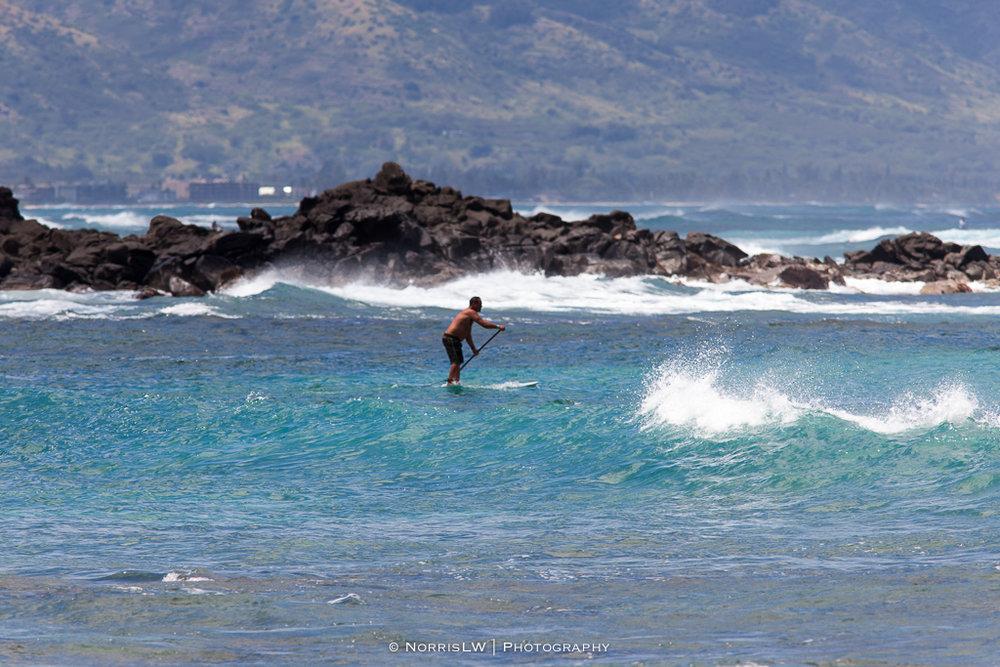 Turtle_Beach_Surf-20170407-017.jpg