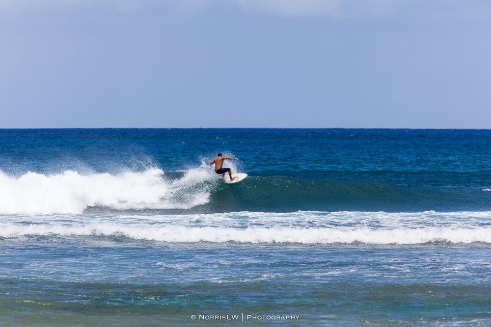 Turtle_Beach_Surf-20170407-018.jpg