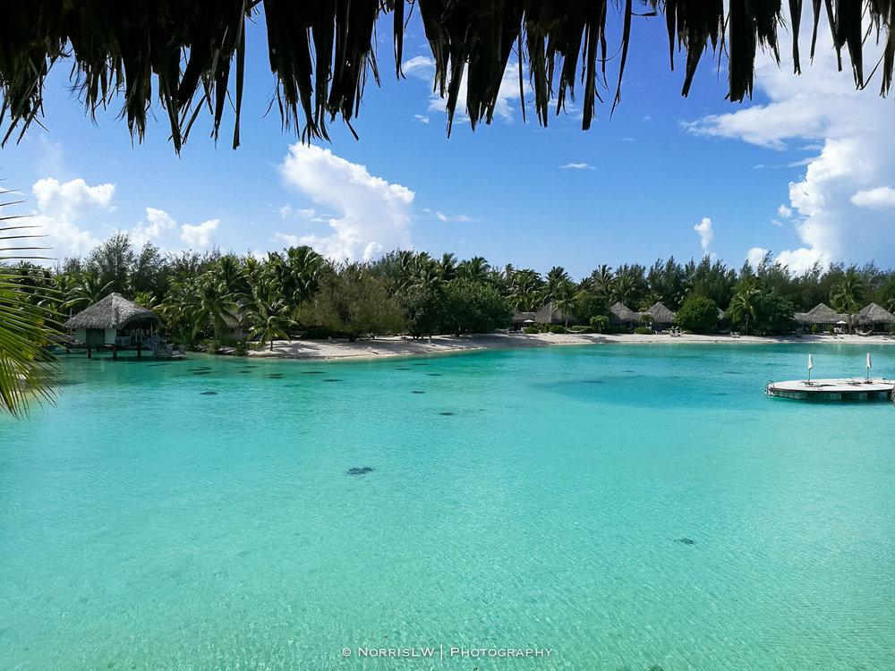NorrisLWPhotography_Tahiti_BoraBora-20180123-018.jpg