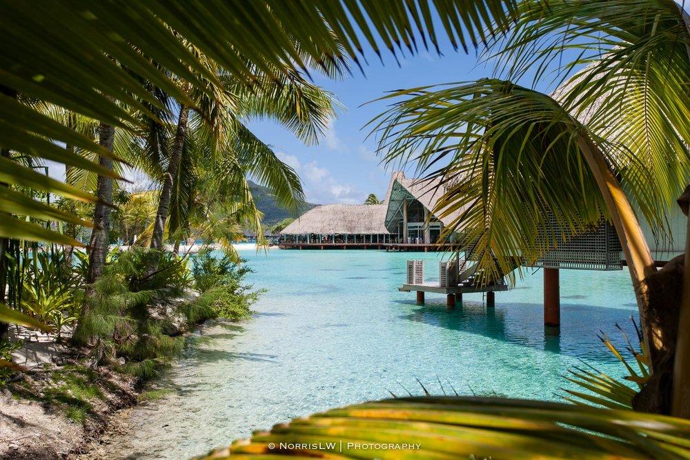 NorrisLWPhotography_Tahiti_BoraBora-20180123-032.jpg
