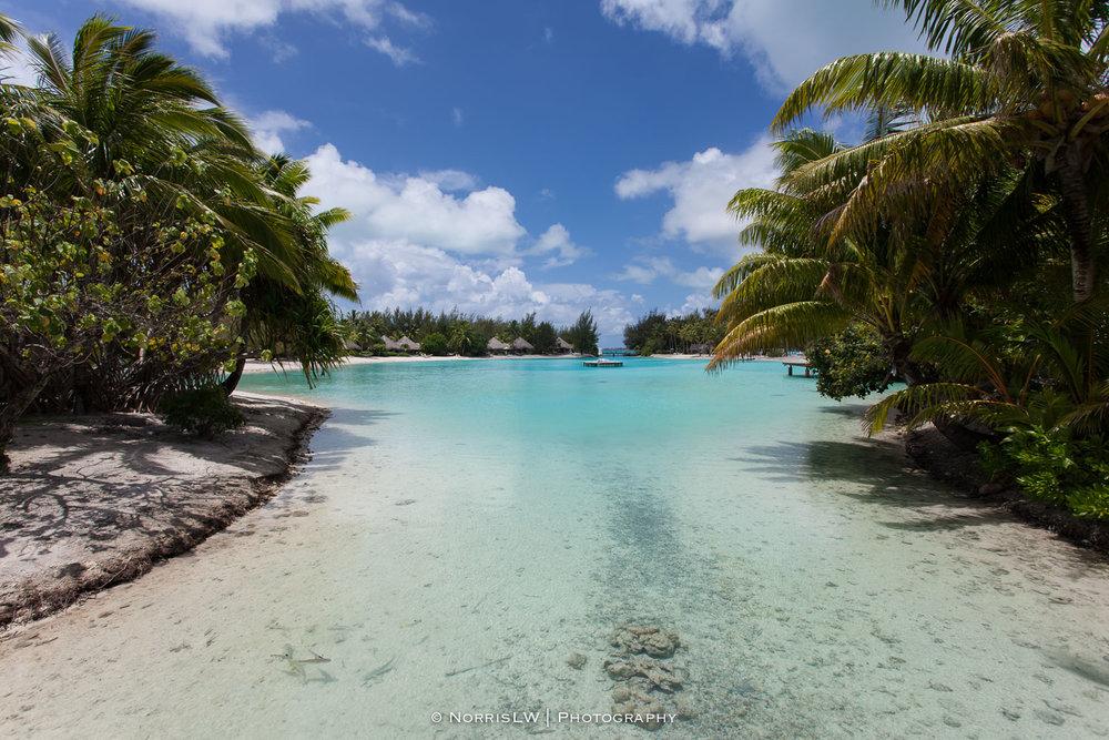 NorrisLWPhotography_Tahiti_BoraBora-20180123-045.jpg