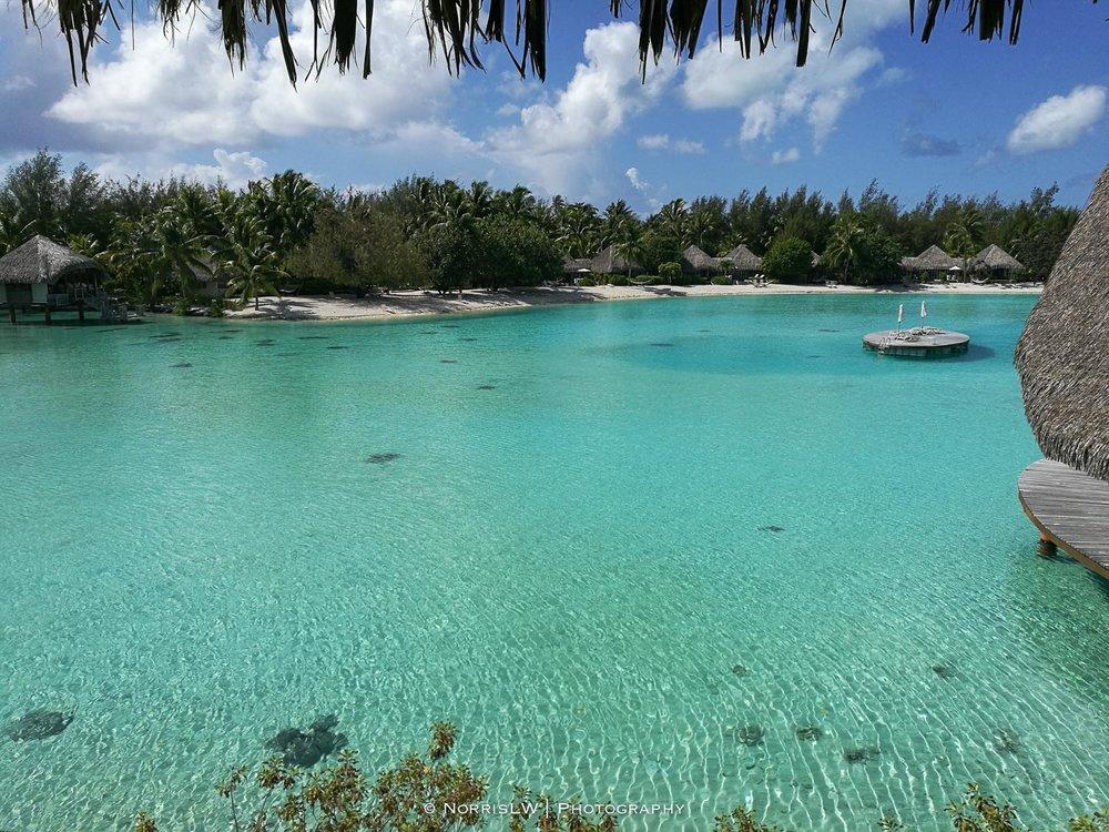 NorrisLWPhotography_Tahiti_BoraBora-20180124-088.jpg