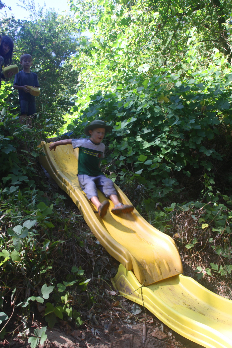 The Banana Slide at the beach email.jpg