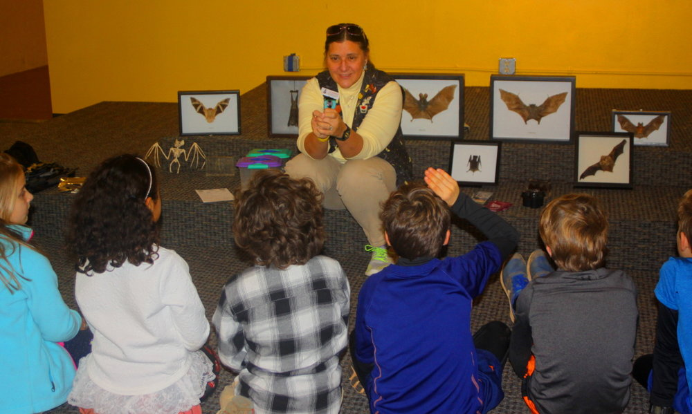 Ki Vicky talks about bats from around the world email.jpg