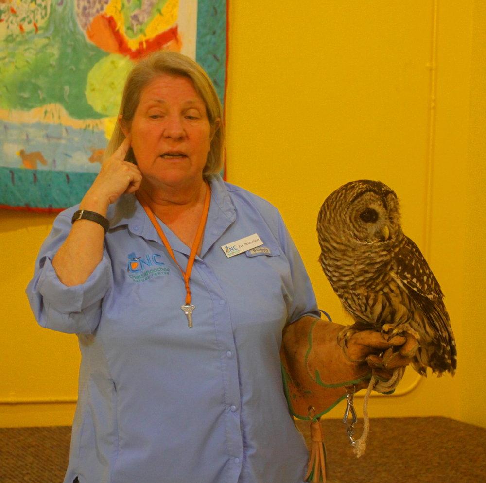 An owl's ears email.jpg