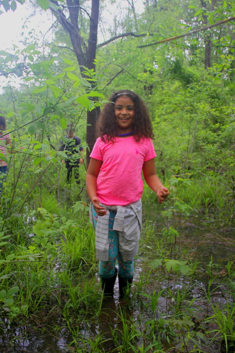 A springtime wetlands walk email.jpg
