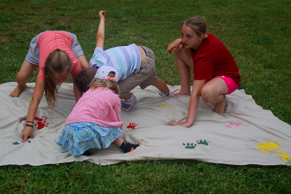 Animal Track Twister on the lawn email.jpg