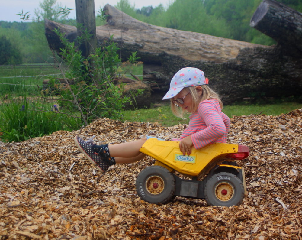 Riding the mulch pile email.jpg