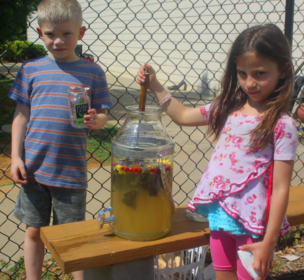 Making sun tea for lunch email.jpg