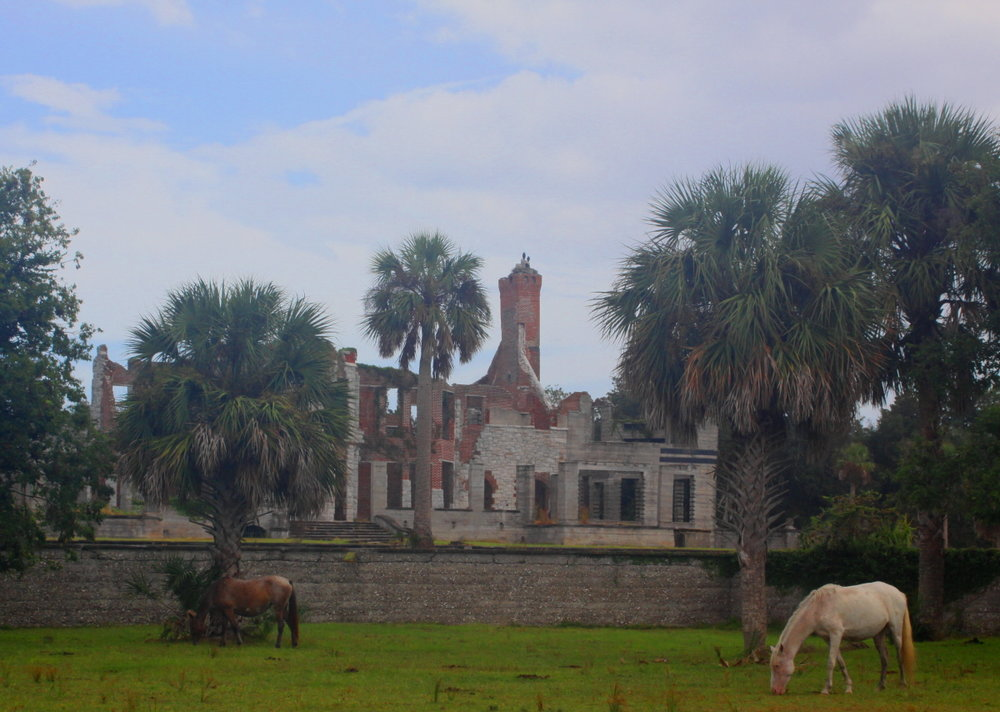 Dungeness mansion built by the Carnegie family in the 1880s email.jpg